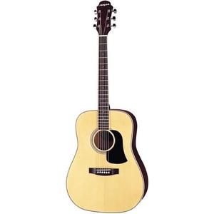 Guitar Acoustic Aria AW-20