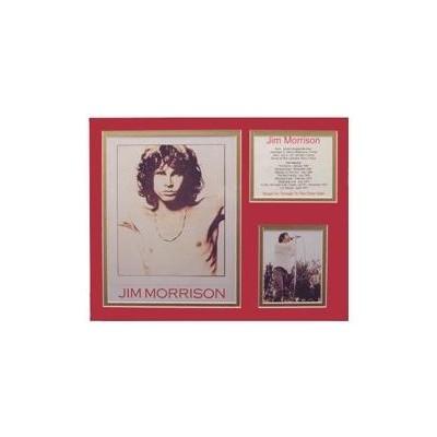 Bio Art - Jim Morrison - Aim - 23302