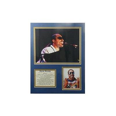 Bio Art - Stevie Wonder - Aim - 23325