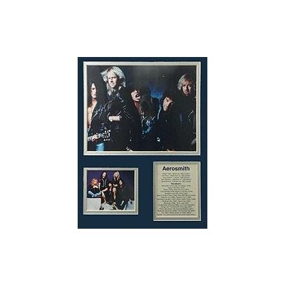Bio Art Aim Aerosmith II - Aim - 23335