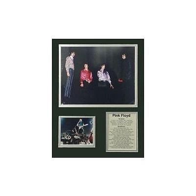 Bio Art Aim Pink Floyd II - Aim - 23340