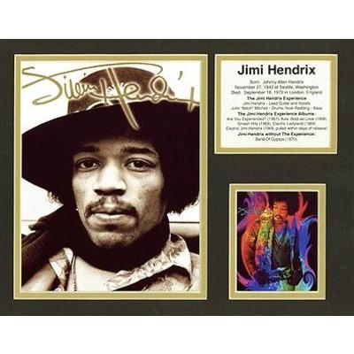 Bio Art Aim Jimi Hendrix - Aim - 23356