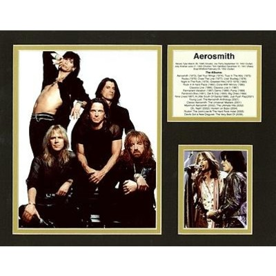 Bio Art Aim Aerosmith - Aim - 23370