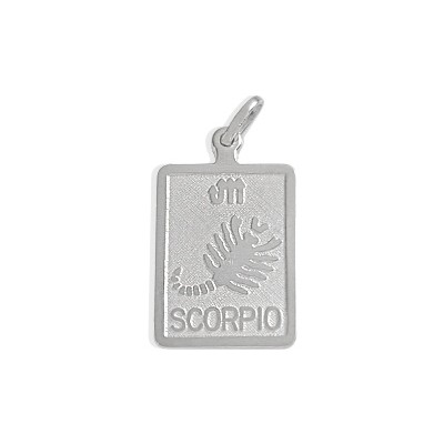 10 Karat White Gold Scorpio Zodiac Pendant with Chain