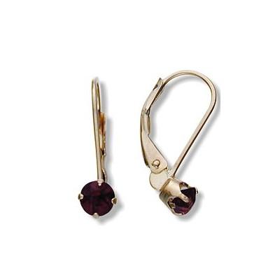 January 10 Karat Yellow Gold Genuine 0.60tcw. 4mm Garnet Leverback Gem Earrings
