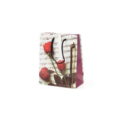 Gift Bag Aim Medium Sheet Music - Aim - 65901