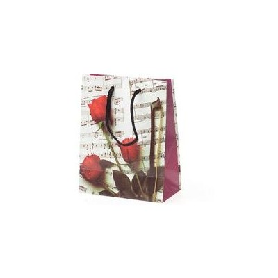Gift Bag Aim XL Sheet Music - Aim - 65903