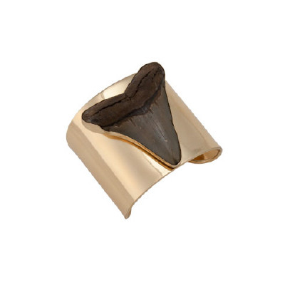 Charles Albert Alchemia Fossil Sharks Tooth Cuff