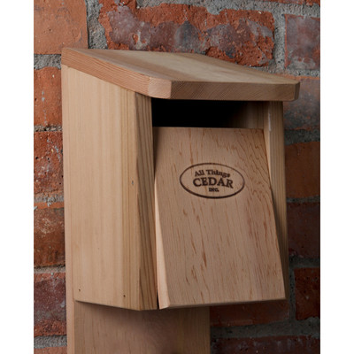 CEDAR Blue Jay Bird House - Birdhouses and Birdfeeders