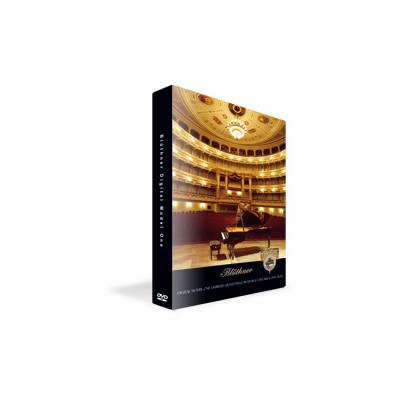 Software Pro Audio Vault PAV-BDM1 Bluthner Digital Model One - Pro Audio Vault - PAV-BDM1