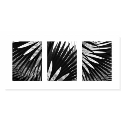 BLUE PALM TRIPTYCH - 14x38 print