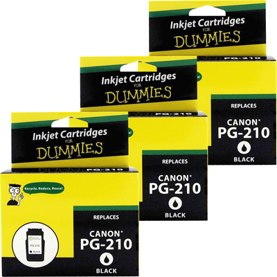 3 Pack of For Dummies - Canon PG-210 Black Inkjet Cartridge (2974B001)
