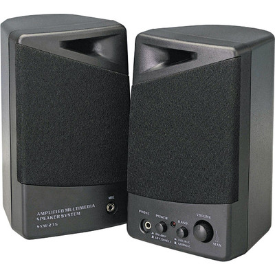 PurTEK Black Amplified Multimedia Speakers