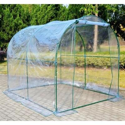 8' x 6' Transparent Greenhouse