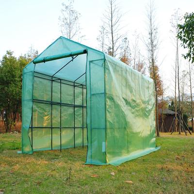 8' x 6' Medium Greenhouse