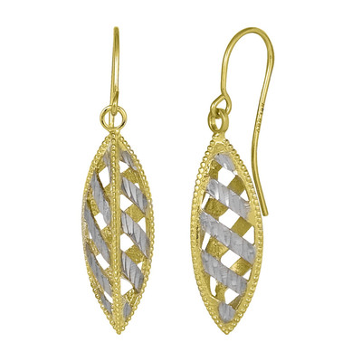 Two Toned Double Helix Earrings