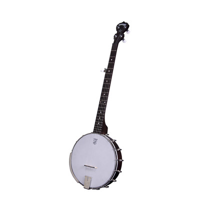 Deering Classic Goodtime 5-String Open Back Banjo with Bag - Deering - CG WITH GIG BAG