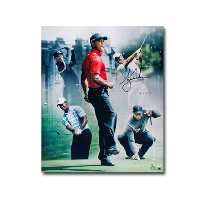 """Tiger Woods Autographed """"Par 5"""" 24x20 Collage  -  Unfamed and Limited to 150"""
