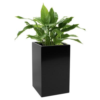 Kanto CARSON Aluminum Indoor and Outdoor Planter - Standard (Black)