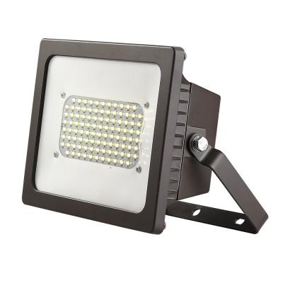 Cast Aluminum Adjustable LED Floodlight w/Dual Voltage